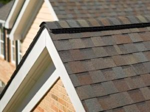 The right shingles to protect your home